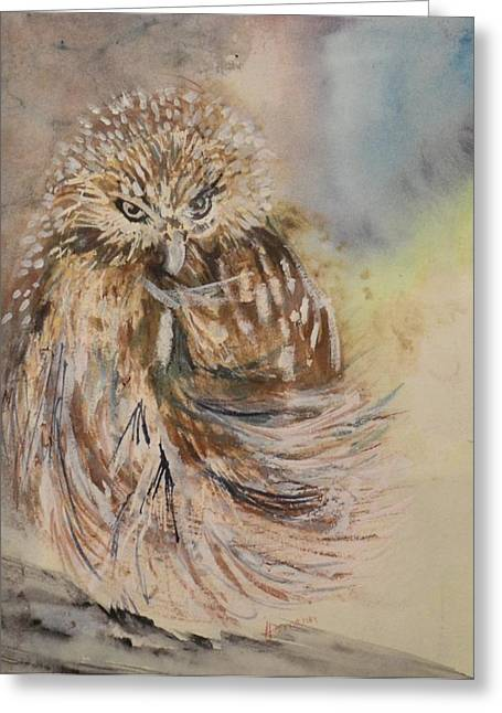 Hoot Hoot Greeting Card