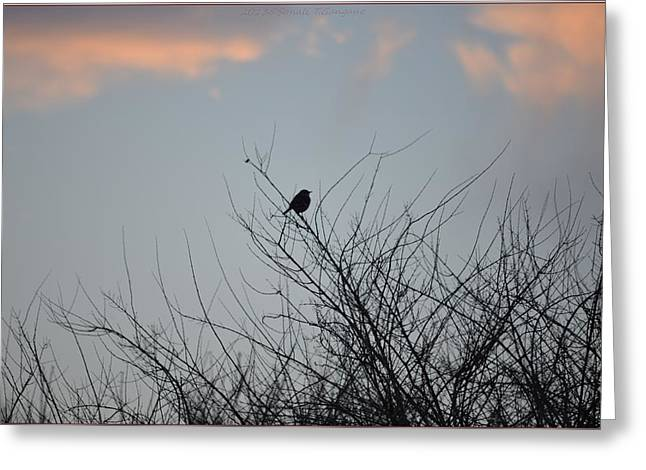 Hope Perched  Atop Greeting Card by Sonali Gangane