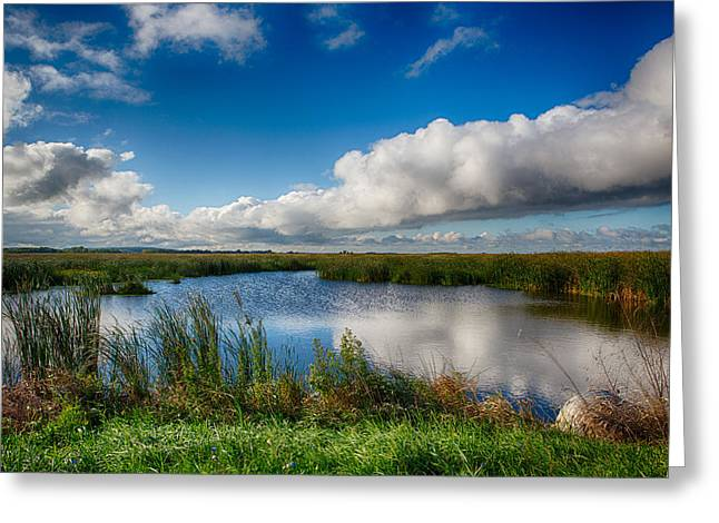 Horicon Marsh Wisconsin Greeting Card