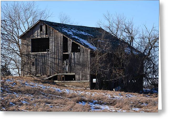 Horning Road Barn2 Greeting Card by Jennifer  King