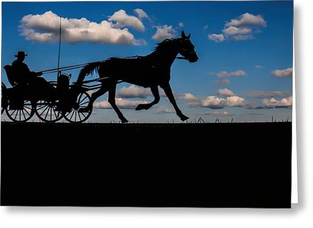 Horse And Buggy Mennonite Greeting Card by Henry Kowalski