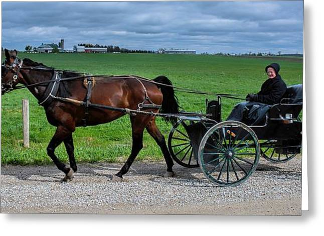Horse And Buggy On The Farm Greeting Card by Henry Kowalski