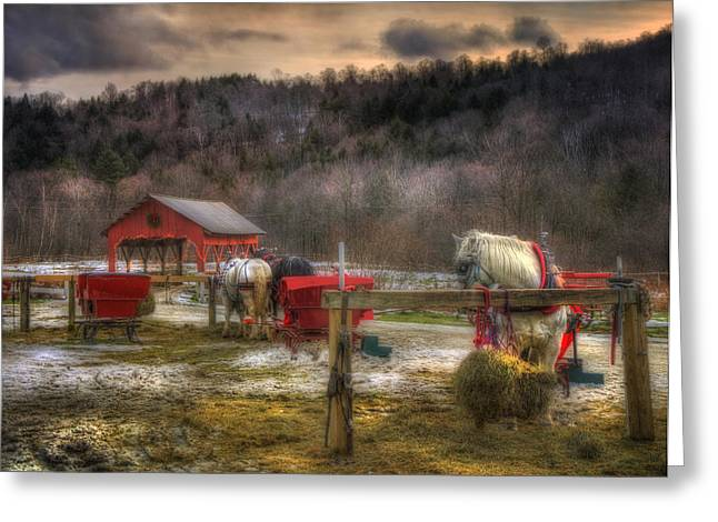 Horse And Carriage Ride - Stowe Vermont Greeting Card