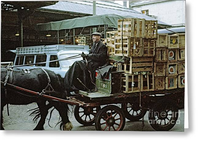 Horse And Cart London 1973 Greeting Card by David Davies