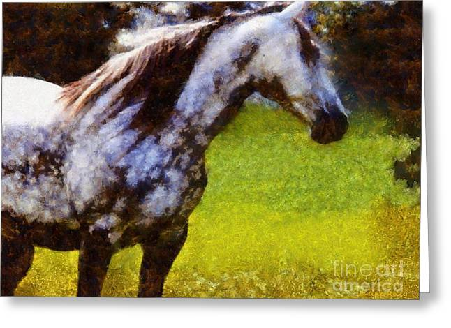 Horse And I Will Wait For You Greeting Card by Janine Riley