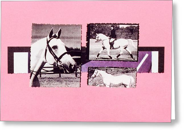 Horse And Rider C Greeting Card by Mary Ann  Leitch