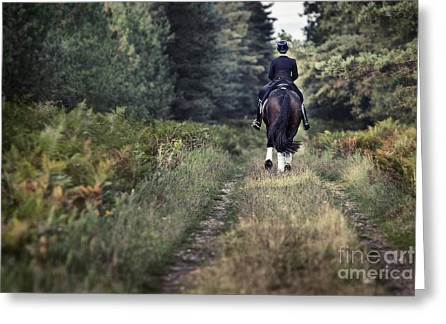 Horse And Rider In Forest Greeting Card