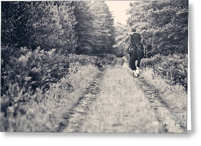 Horse And Rider On Path Greeting Card