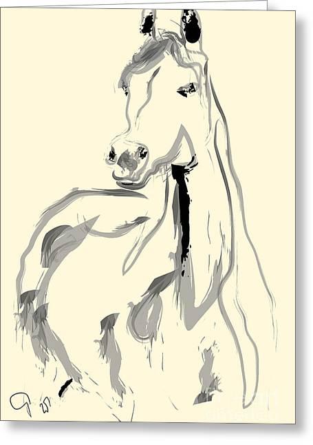 Horse - Arab Greeting Card