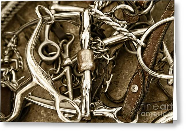Greeting Card featuring the photograph Horse Bits And Reins And Ropes by Lincoln Rogers
