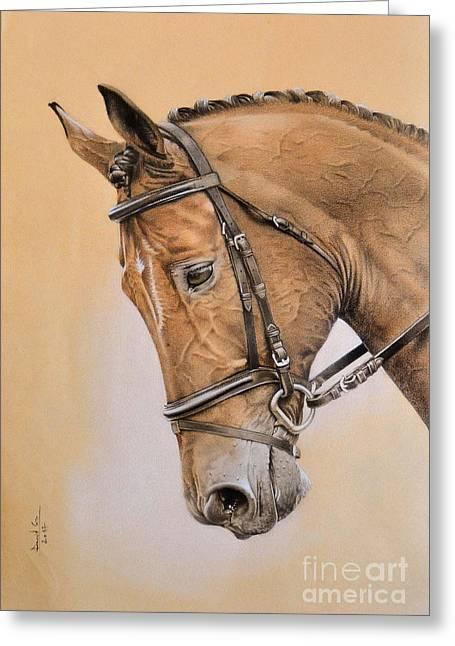 Horse Greeting Card by David Mela