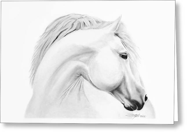 Horse Greeting Card by Don Medina