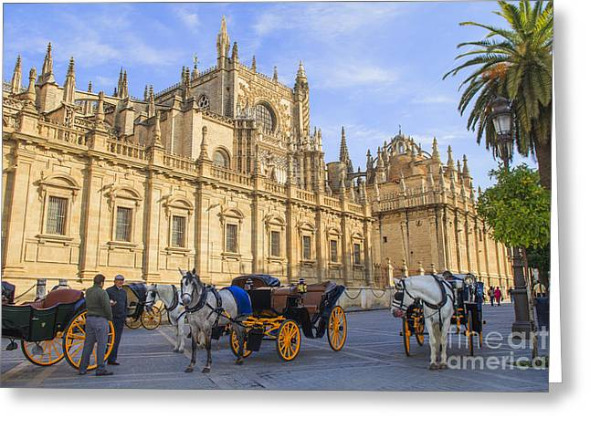 Horse Drawn Carriages In Seville Greeting Card by Patricia Hofmeester