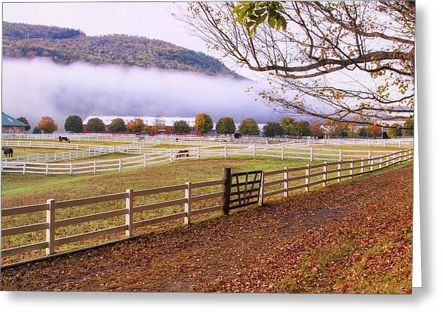 Horse Farm Autumn Greeting Card