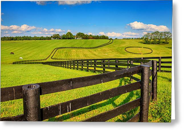 Horse Farm Fences Greeting Card