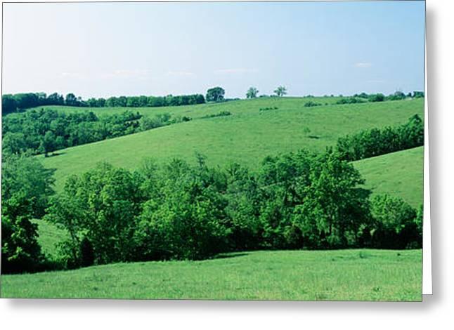 Horse Farm, Kentucky, Usa Greeting Card