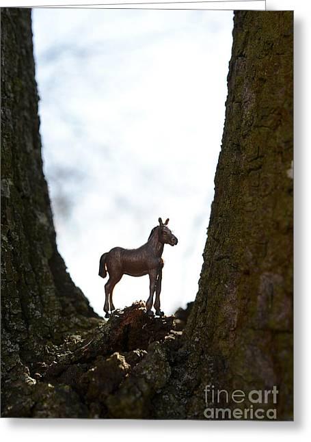 Horse Figurine Greeting Card by Bernard Jaubert
