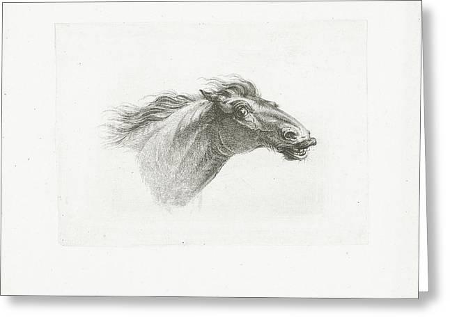 Horse Head, Joannes Bemme, Gerrit Malleyn Greeting Card by Joannes Bemme And Gerrit Malleyn