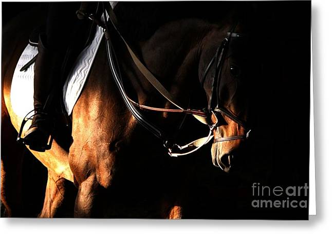 Horse In The Shade Greeting Card