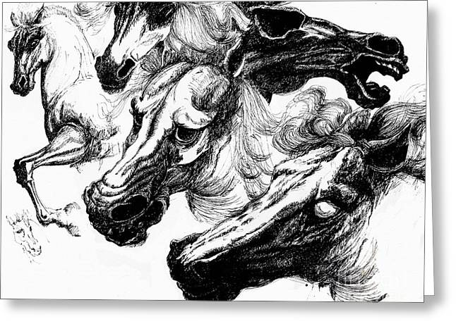 Horse Ink Drawing  Greeting Card
