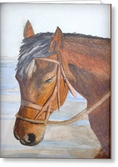 Horse Greeting Card by J A Cahill