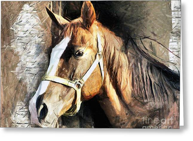 Horse Portrait - Drawing Greeting Card