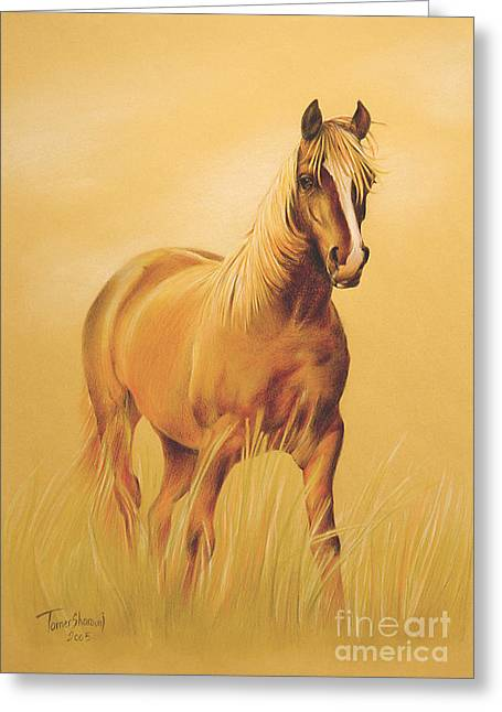 Horse Portrait Greeting Card by Tamer and Cindy Elsharouni