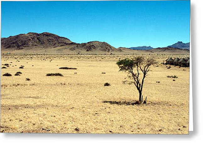 Horse Ranch On A Homestead, Namibia Greeting Card by Panoramic Images