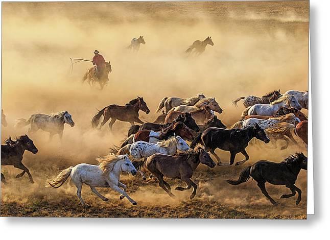 Horse Run Greeting Card