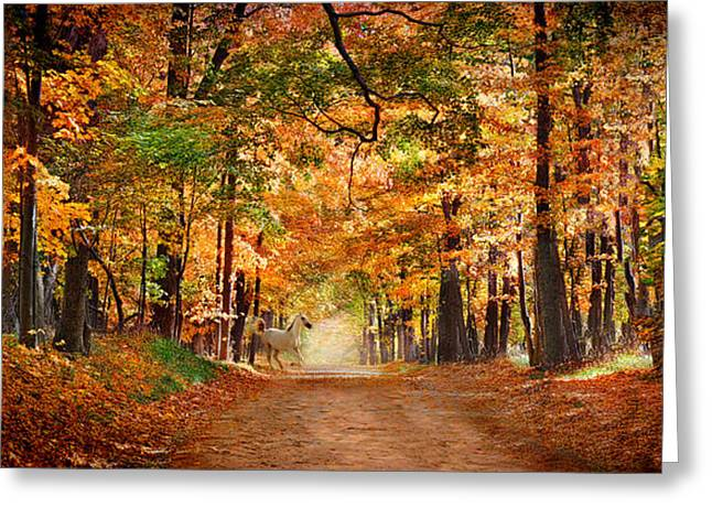Horse Running Across Road In Fall Colors Greeting Card by Panoramic Images