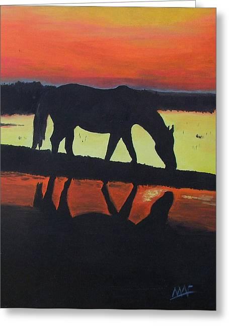 Horse Shadows Greeting Card by Mark Fluharty