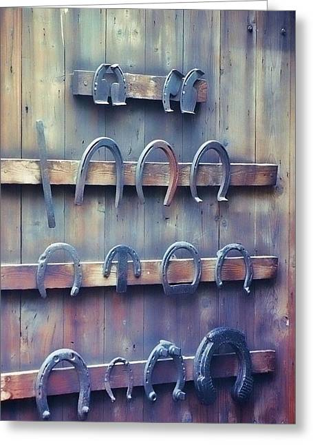 Horse Shoes Greeting Card by JAMART Photography