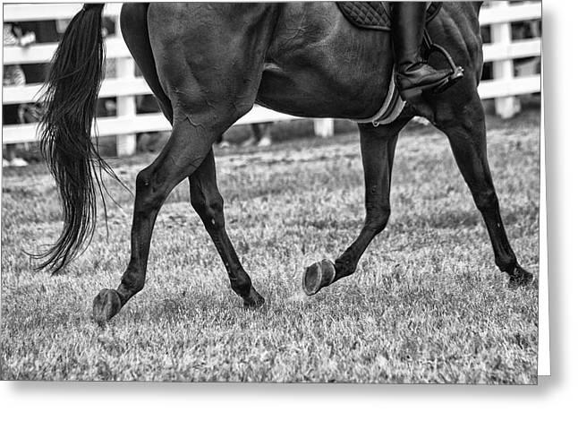Horse Stepping Greeting Card by Karol Livote