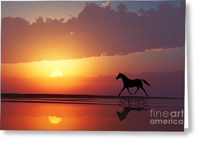 Horse Walk Silhouette Greeting Card by Aleksey Tugolukov