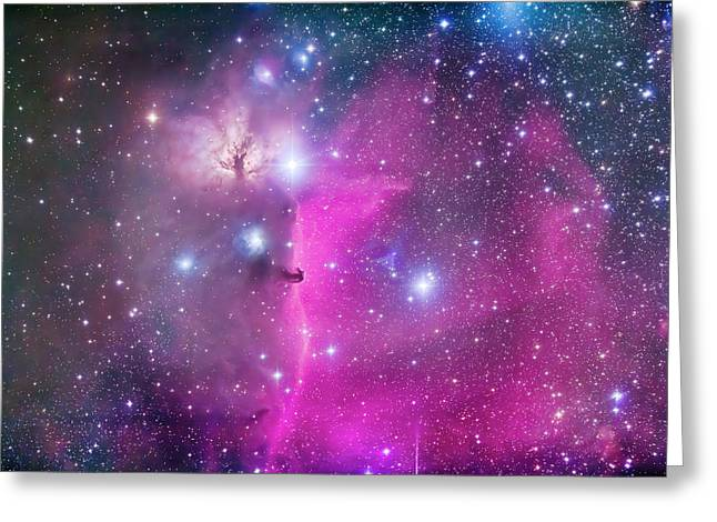 Horsehead Nebula B33 & Flame Nebula Ngc Greeting Card by Alan Dyer