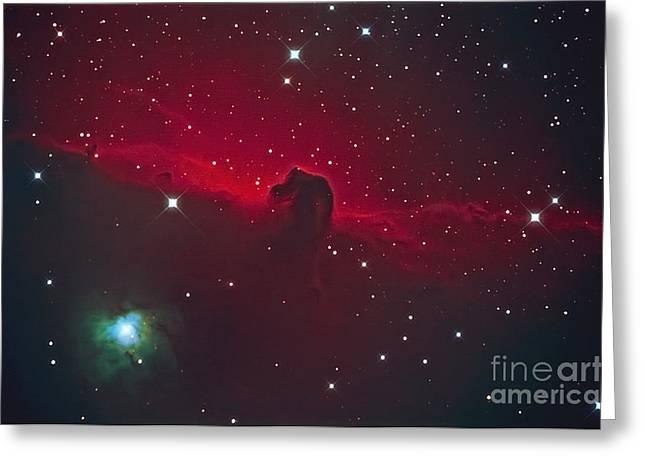 Horsehead Nebula Greeting Card by John Chumack