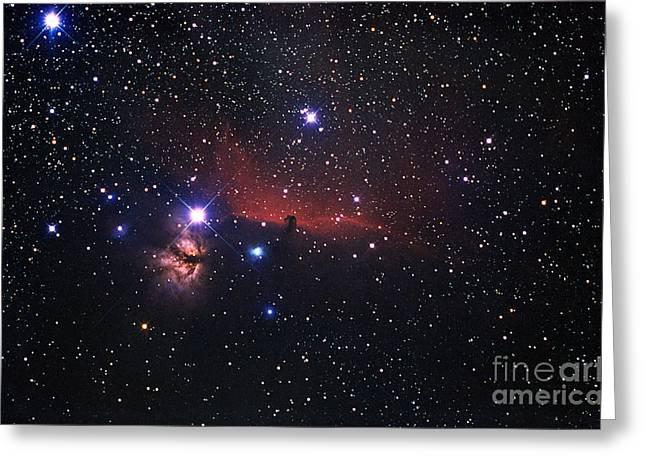 Horsehead Nebula Region Greeting Card by John Chumack