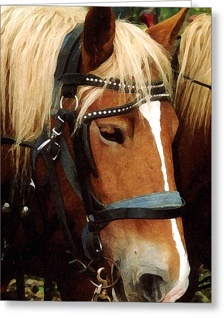 Horsehead Greeting Card by Susan Crossman Buscho