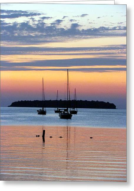 Horsehoe Island Sunset Greeting Card by David T Wilkinson