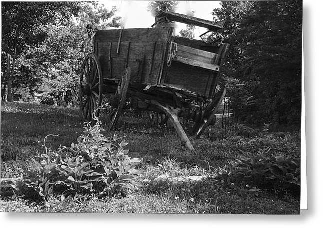 Horseless Blk And Wht  Greeting Card by Robert J Andler