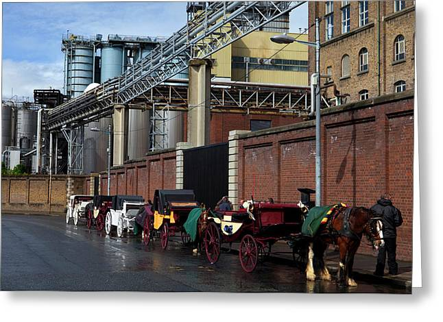 Horses And Carriages Greeting Card by Panoramic Images