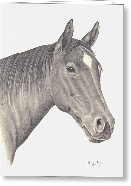 Horses Beauty Greeting Card by Patricia Hiltz
