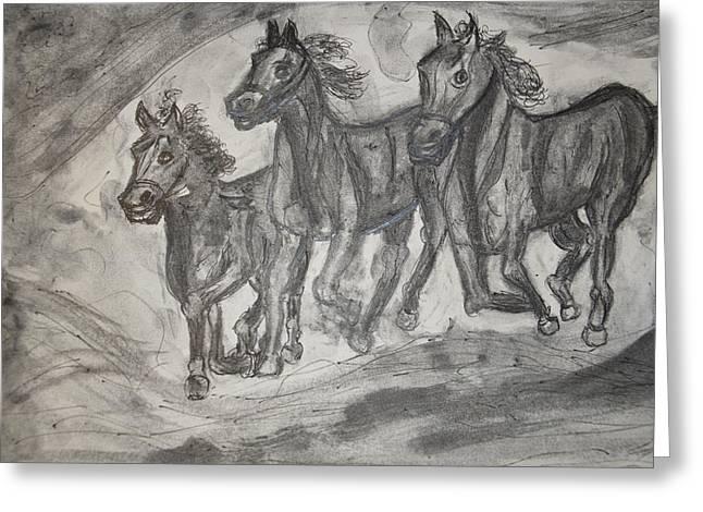 Horses Greeting Card by Daniele Fedi