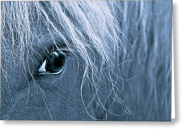 Horse's Eye Blue Greeting Card by Jennie Marie Schell
