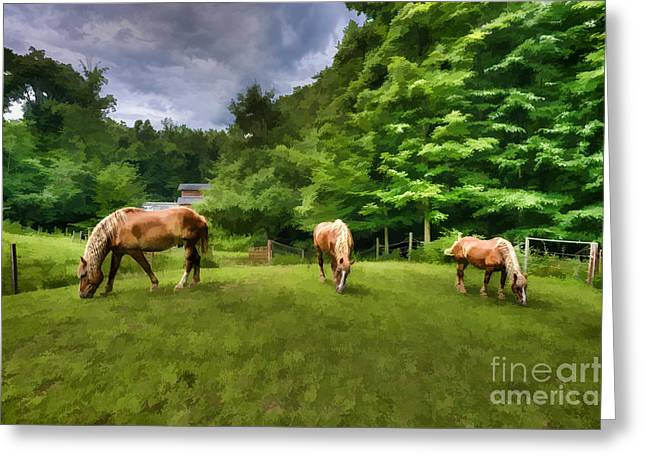 Horses Grazing In Field Greeting Card by Dan Friend