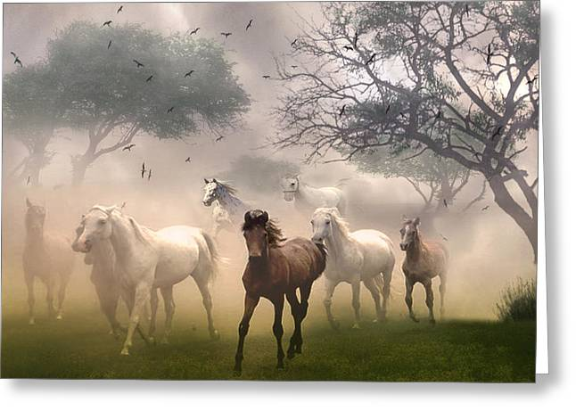 Horses In The Mist Greeting Card