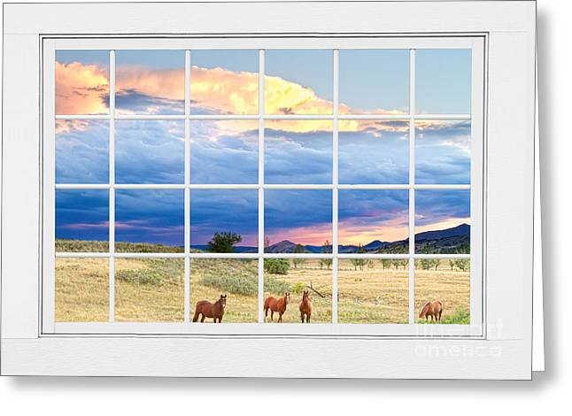 Horses On The Storm Large White Picture Window Frame View Greeting Card
