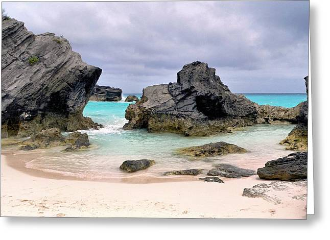 Horseshoe Beach In Bermuda Greeting Card