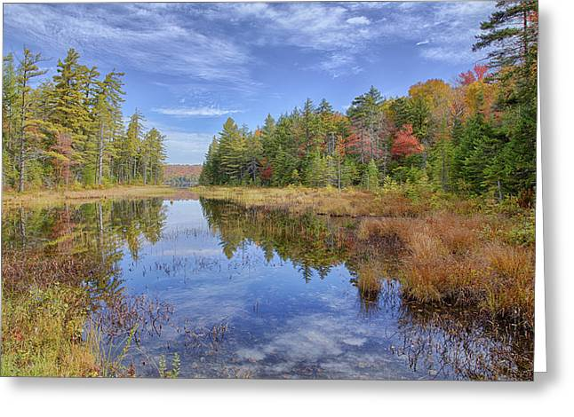 Horseshoe Lake Hdr 01 Greeting Card