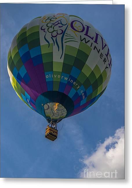 Hot Air Balloon Ow Greeting Card by David Haskett